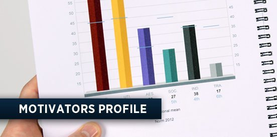 MOTIVATORS PROFILE in WORKFORCE TRANSITION