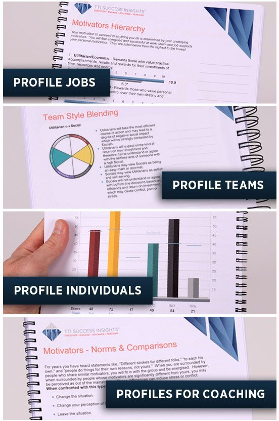 Motivators Reports for People & Jobs
